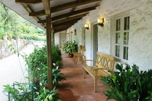 Homestay Accommodation in Thekkady, KERALA